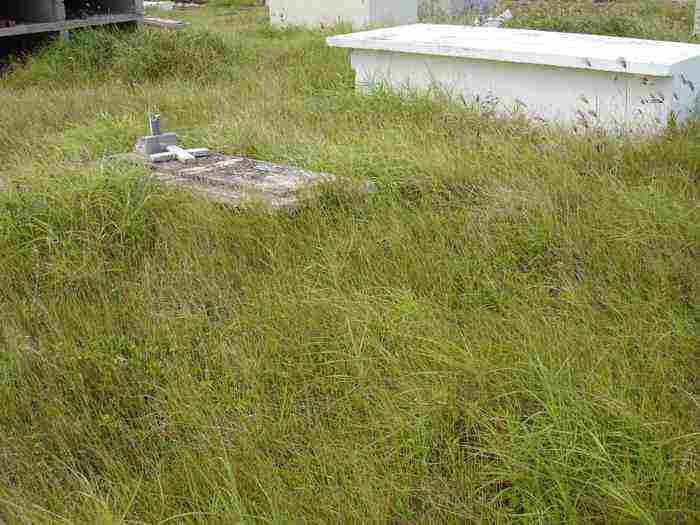 kerkhof2