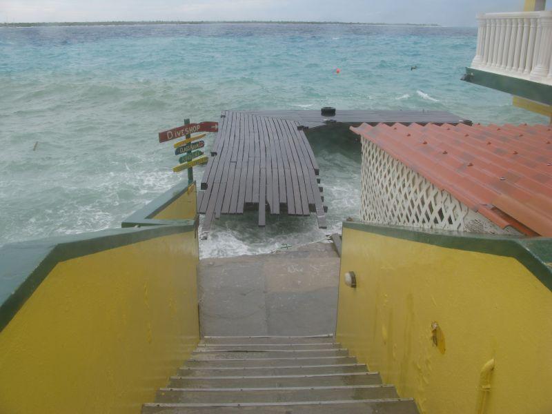 Buddy Dock 2